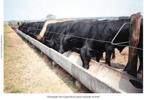 Subprodutos e aplicações no agronegócio