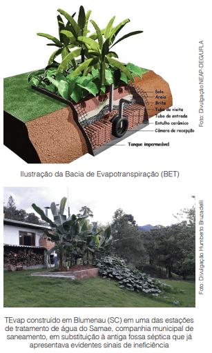 Na Permacultura e Saneamento Ecológico, esgoto não é problema, mas, sim, fonte de recursos